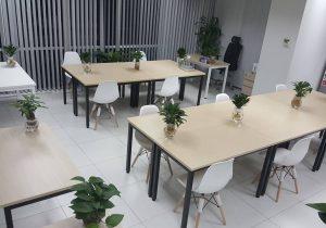 Gợi ý bài trí mẫu văn phòng xanh hiện đại và độc đáo