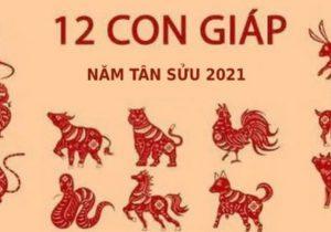 Vận hạn 12 con giáp trong năm 2021